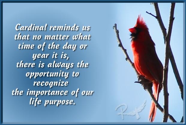 cardinal importance